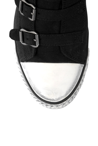 Black Genial Canvas Mid Wedge Buckle Trainer by Ash