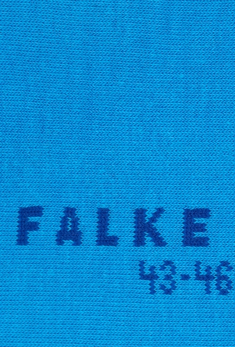 Blue Family Casual Socks by Falke